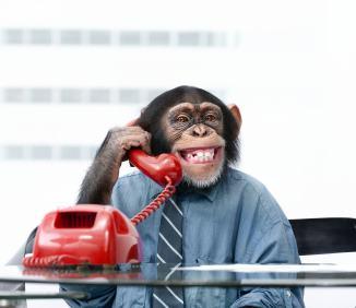 アウトバウンドコール営業電話におけるCTIシステム活用方法